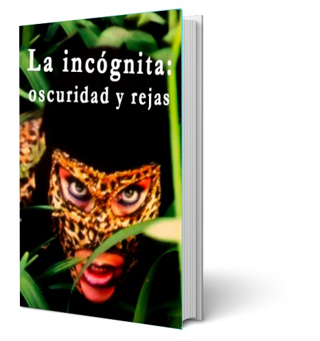 libro_la_incognita_oscuridad_y_rejas_doris_david
